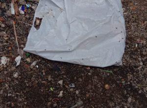 Hyderabad: Newborn female child found in Ameerpet