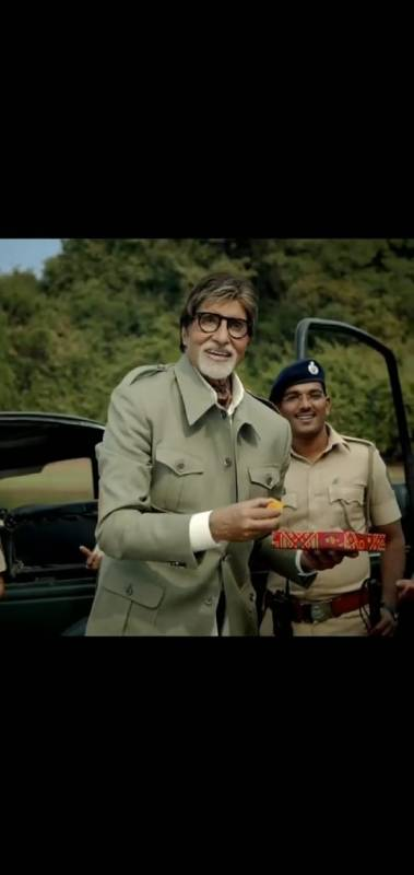 Bollywood Megastar Amitabh Bachchan praises increase in number of Tigers in India