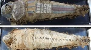 Telangana to get Egyptian mummy in a division of interests