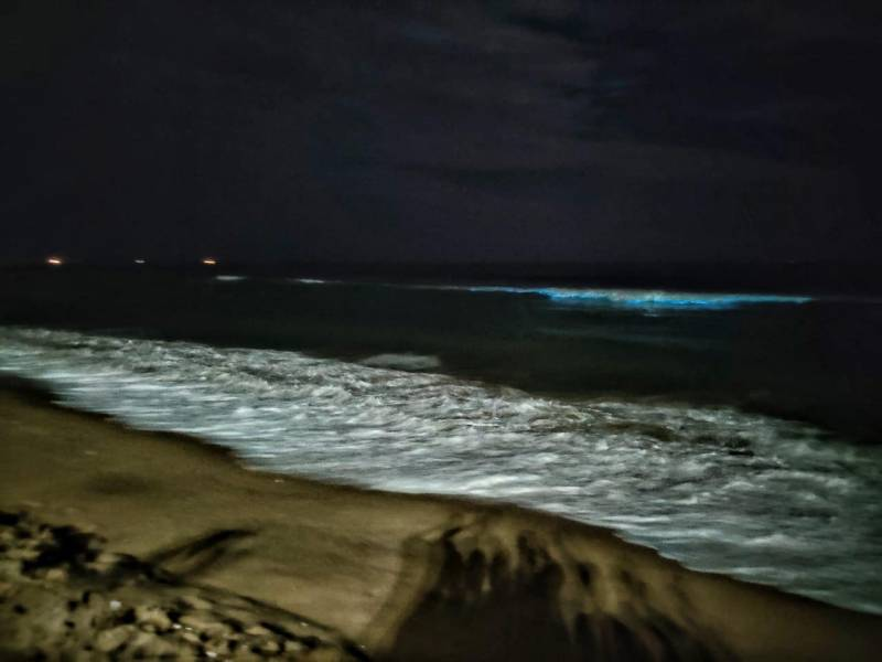 Sparkling blue waves at Marina Beach leave people in awe