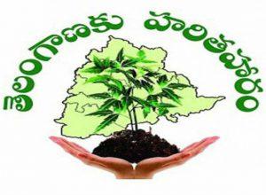 Haritha Haram saplings: Gram Panchayati fines shepherd Rs 1,000