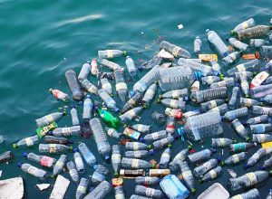 AP, TS skip giving info on plastic waste: CPCB
