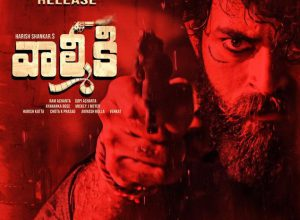 Varun Tej all set to appeal to the masses