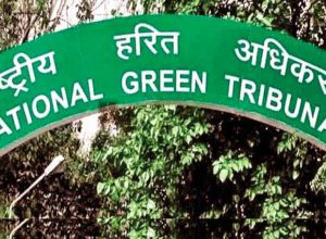 NGT dismisses plea challenging odd-even scheme in Delhi
