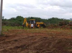 Neknampur lake encroachment continues: 40 Harithaharam trees uprooted