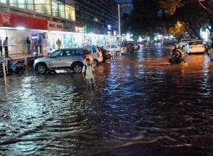 Rains in Hyderabad uproot tree, Motorist killed