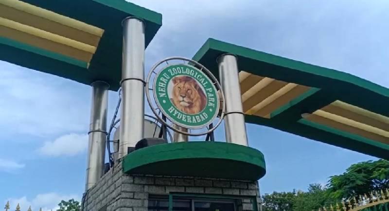 Nehru Zoo Park