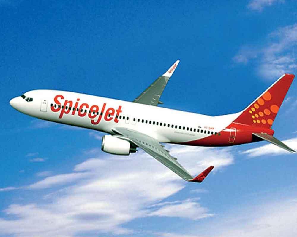 Passenger dies onboard Spicejet flight
