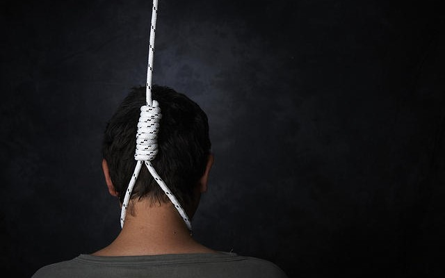 One arrested in doctor's suicide case in Krishna district