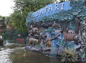 Hyderabad zoo temporarily closes Safari Park complex due to heavy rains