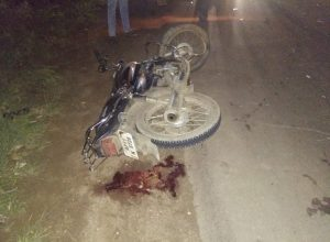 Lack of helmet tuned fatal for two victims of a bike accident