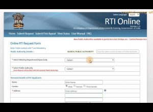 Mahatma Gandhi would resort to Satyagraha against RTI Amendment!