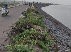 Telangana man inspires many to join his #CleanKarimNagarDam
