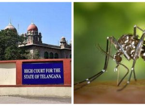 HC Pulls up Administration over Dengue measures