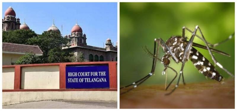 HC Pulls up Administration over Dengue measures