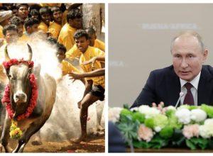 Putin to attend Jallikattu in Alanganallur ?