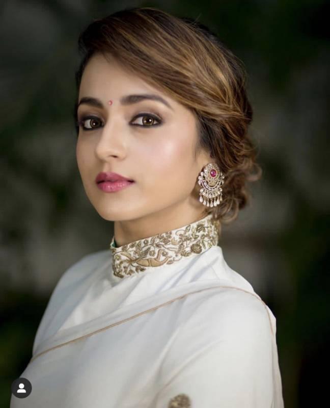 Did Trisha reject her Telugu comeback film for this reason?
