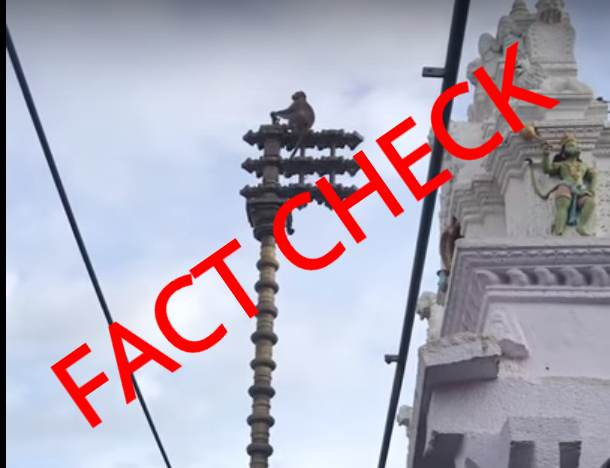 Fact Check: Did a monkey actually ring the bells on a Dwajasthambam in Ayodhya Ram Mandir?