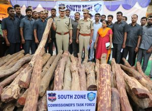 Hyderabad police unearths inter-state red sanders smuggling racket; arrests four
