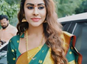 Controversial actor Sri Reddy setting the stage to enter politics