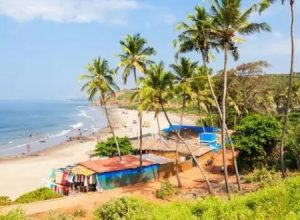 Velocity MR study reveals that 50% Indians prefer beach vacations