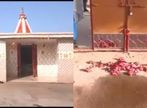 Fact check: Meat thrown near entrance of Shiv temple in Jharkhand