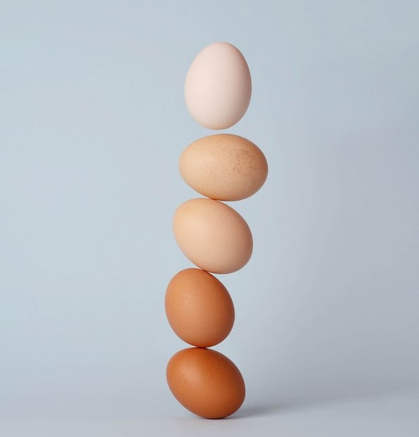 Despite rich protein, consumption of egg is low in AP
