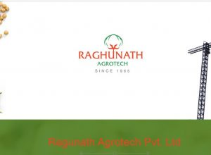 Income tax surveys properties of industrialist Raghunath Mittal