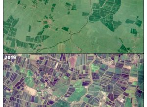 Satellite images reveal how aquaculture takes over agriculture in AP