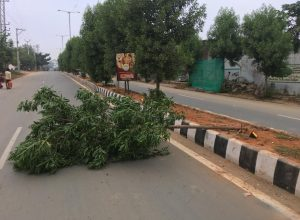 Siddipet: Car driver fined Rs. 9,500 for hitting a tree