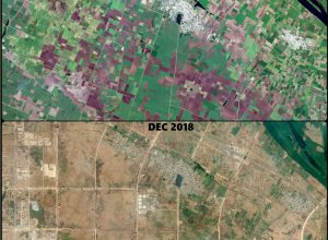 Satellite images show lush green Amaravati turn barren in 4 years