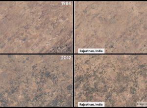 Painting desert green: Satellite pics show transformation in Rajasthan