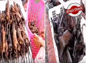 Fact Check: Does this video really show a market in Wuhan where Coronavirus originated?