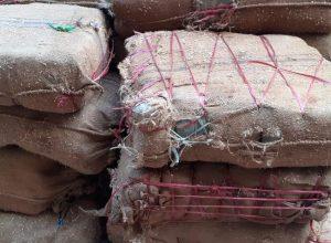 DRI sleuths seize 1335 kg Ganja worth 2 Cr at Pedda Amberpet Toll plaza