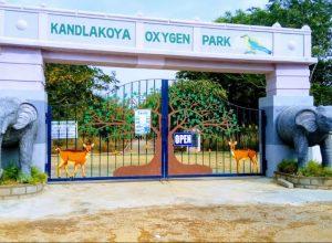 Kandlakoya Oxygen Park: Where Hyderabadis take a deep breath