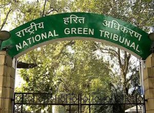 Illegal sand mining: NGT unsatisfied with Andhra Pradesh government