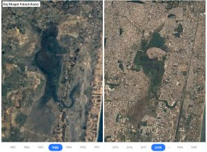 Satellite images reveal Pallikaranai marshland shrinks by 93% in last 30 years