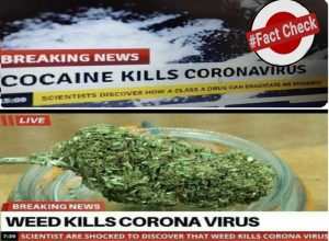 Fact check: Can cocaine kill Corona virus?