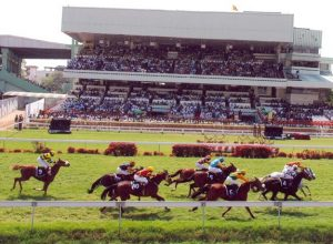 GST hits horse racing, Hyderabad Race Club turnover down by three times