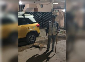 Case against watchman for brutal attack on a dog in Domalguda