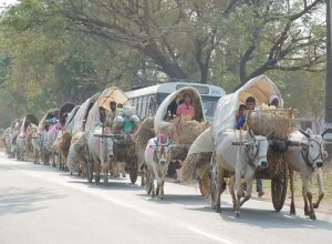 From bullock cart to chopper, Medaram devotees have come a long way