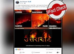 Fact Check: Images of Uttarakhand wildfire on social media are fake