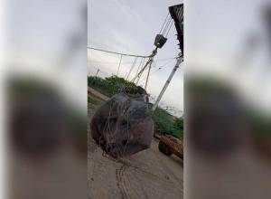 Manta ray fished out of Machilipatnam, likely to be auctioned