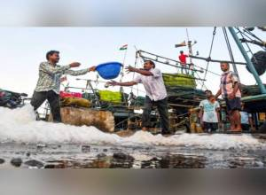 Wait for Silver Pomfret, Seer Fish, prawn to end soon as fishing season set to resume in Andhra