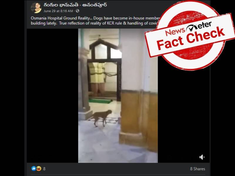 Fact Check: Old video of dogs roaming around in Osmania Hospital wards resurfaces amid pandemic