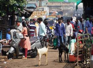 Slaughterhouses, goat markets flout social distancing rules on Eid al-Adha