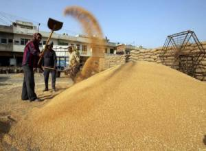 How technology is helping Telangana to check rice quality, arrest pilferage