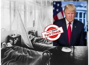 Fact Check: President Donald Trump's claim that Spanish flu ended second world war is FALSE