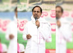 KCR asks farmers to cultivate paddy in 50 lakh acres, other crops in 15 lakh acres
