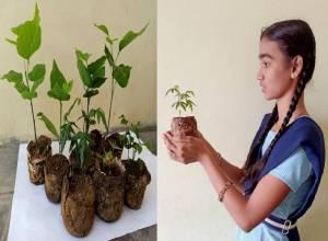 Telangana students win national prize for making bio-degradable pots